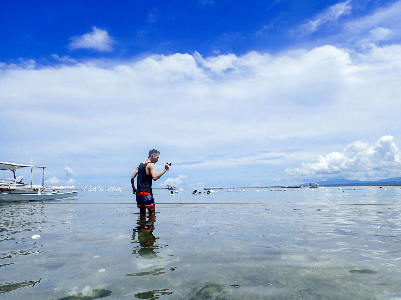 菲律賓杜馬蓋地阿波島 Apo Island 浮潛看海龜