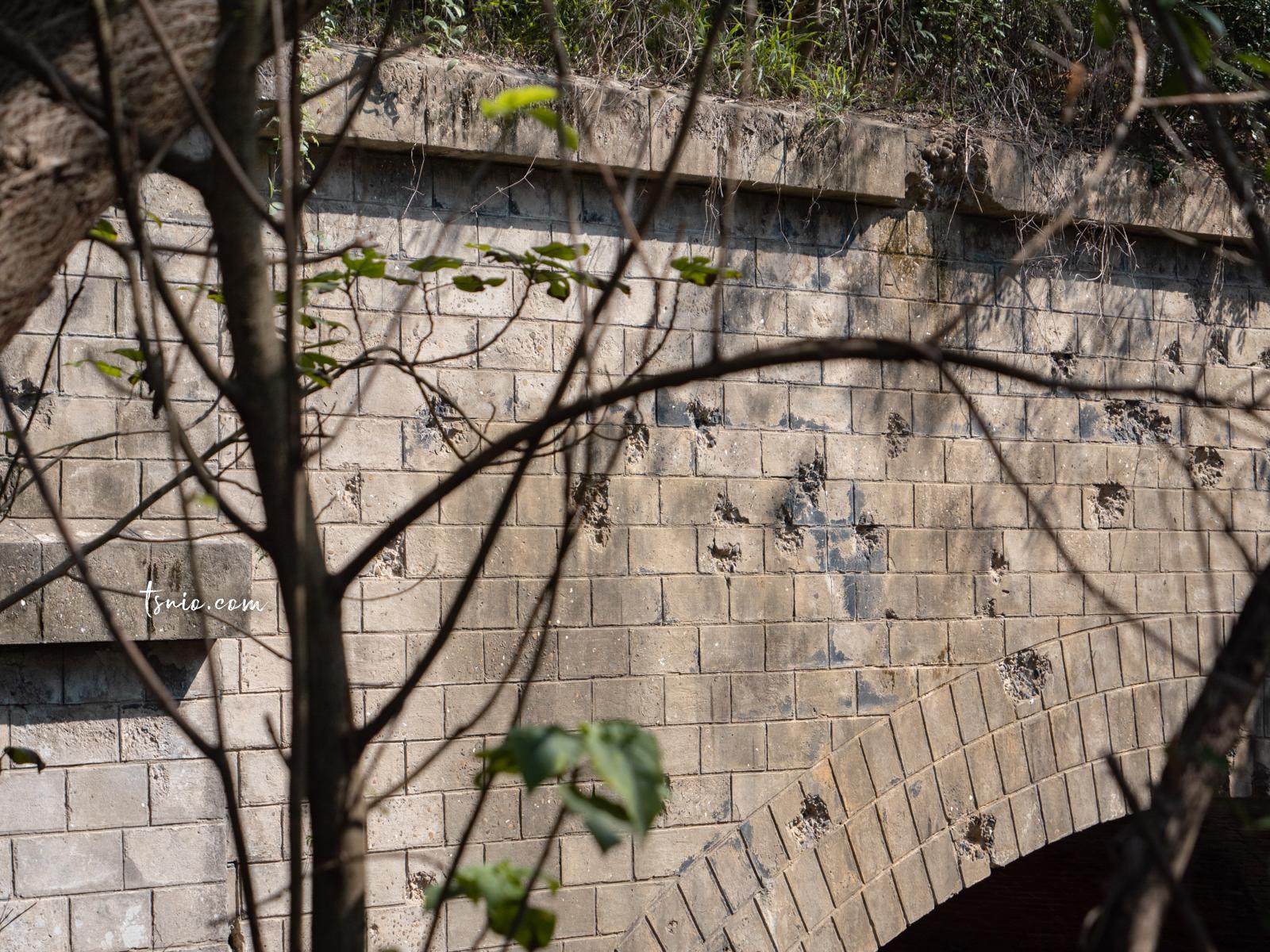 苗栗竹南一日遊 苗北藝文中心、龍鳳宮、龍鳳漁港、崎頂車站、崎頂子母隧道 專屬海線的浪漫