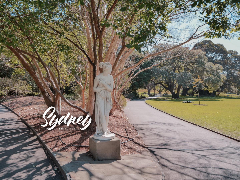 澳洲雪梨景點 雪梨皇家植物園 The Royal Botanic Garden 市區中的清新綠洲